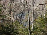 2565 Wilderness Parkway - Photo 6