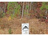 0 Elsberry Mountain Road - Photo 14