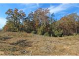 0 Elsberry Mountain Road - Photo 28