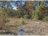 0 Elsberry Mountain Road - Photo 29