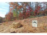 LOT 1 Elsberry Mountain Road - Photo 6