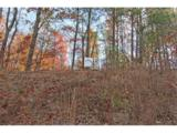 LOT 11 Elsberry Mountain Road - Photo 6