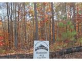 LOT 13 Elsberry Mountain Road - Photo 6