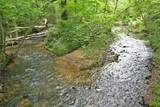 0 Clay Creek Falls Road - Photo 2