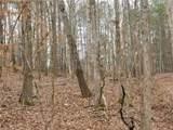 3502 Clear View Trail - Photo 6