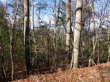 252 Wild Turkey Bluff - Photo 2