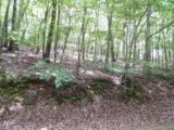 3208 Crippled Oak Trail - Photo 4