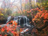 1069 Deer Run Ridge - Photo 5