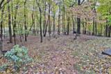 1831 Crippled Oak Trail - Photo 40