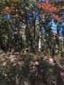 139 Lumpkin View Drive - Photo 2