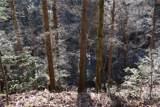 0 Buck Run - Photo 17