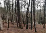 ST 512 Long Swamp Drive - Photo 6