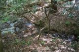 17 Etowah Trail - Photo 11