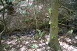17 Etowah Trail - Photo 13