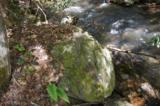 17 Etowah Trail - Photo 15