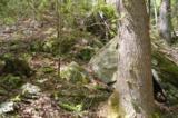 17 Etowah Trail - Photo 16