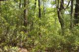 17 Etowah Trail - Photo 21