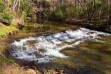 221 Ash Trail - Photo 1
