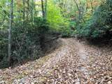 Tr 5 High Shoals Road - Photo 2