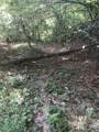 00 Wild Turkey Trail - Photo 1