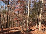 12 Mountain Creek Trail - Photo 2