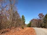 12 Mountain Creek Trail - Photo 3