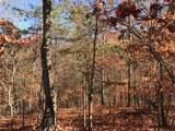 12 Mountain Creek Trail - Photo 6