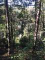 3 Waters Edge On Trc - Photo 4
