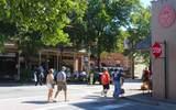 520 Clover Court - Photo 105