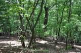 3141 Wild Turkey Bluff - Photo 1