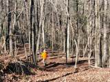 33.71 Acres Rocktree Road - Photo 51