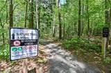 1295 Chipmunk Forest Chase - Photo 41