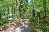 1295 Chipmunk Forest Chase - Photo 42