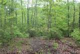 Lot 5 Owl Mountain Trail - Photo 9