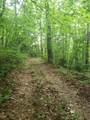 0 Shady Trail Drive - Photo 1