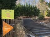 4906 Little Fox Trail - Photo 5