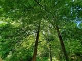 1699 Broadnax Mill Road - Photo 8