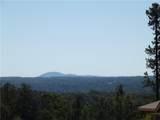 417 Horizon Trail - Photo 28