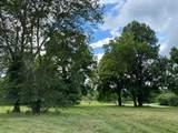 0 Barney Fields Road - Photo 3