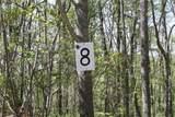 8 Big Oak Drive - Photo 1