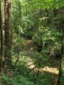 9.49 Acres - Rocktree Road - Photo 3