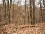 0 Pecks Mill Creek Road - Photo 12