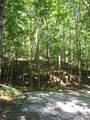 0 Pecks Mill Creek Road - Photo 2