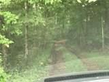 0 Pecks Mill Creek Road - Photo 7