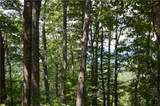 772 Wild Turkey Bluff - Photo 2