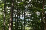 772 Wild Turkey Bluff - Photo 3