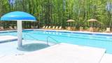 3920 Lilly Brook Drive - Photo 10