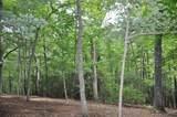 7071 Wild Azalea Trail - Photo 8