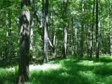 2197 Rabbit Hill Circle - Photo 2