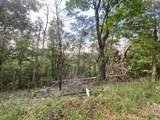 00 Shadowick Mountain Road - Photo 2